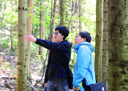 樹木調査実習