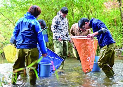 魚類調査実習