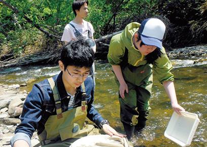 水生生物(河川)調査実習