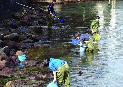 水生生物(海洋)調査実習